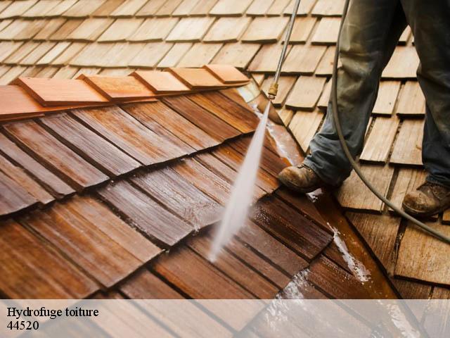 Entreprise hydrofuge toiture à Moisdon La Riviere tel: 02.52.56.18.48